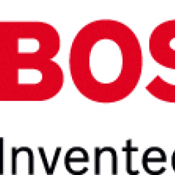 Bosch Cut Stone 9 inch slovenian