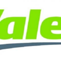 Valeo Brake Fluid Dot4